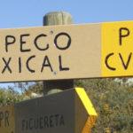 Una titulada del Campus crea un sistema inteligente de recomendación de rutas para Pego y les Valls