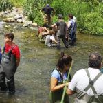 Un trabajo de la UPV analiza aguas del río Serpis para su recuperación ambiental