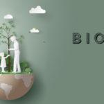 El Campus de Gandia participa en la Biofira, acció contra el canvi climàtic