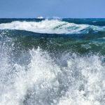 'Mantener los ecosistemas dunares es una garantía de que vamos a seguir teniendo playas'